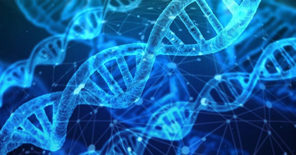 Fibromyalgie Genetisch