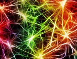 Fibromyalgie, waardoor ontstaat jouw pijn-min